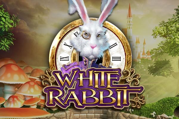 White Rabbit REVIEW